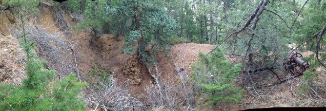 One of dozens of pit mines on our hill