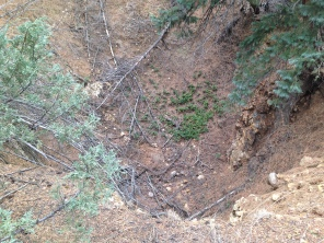 Inside the pit mine. The angle makes it hard to see how deep it is.