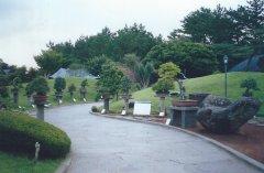 bonsai-artpark