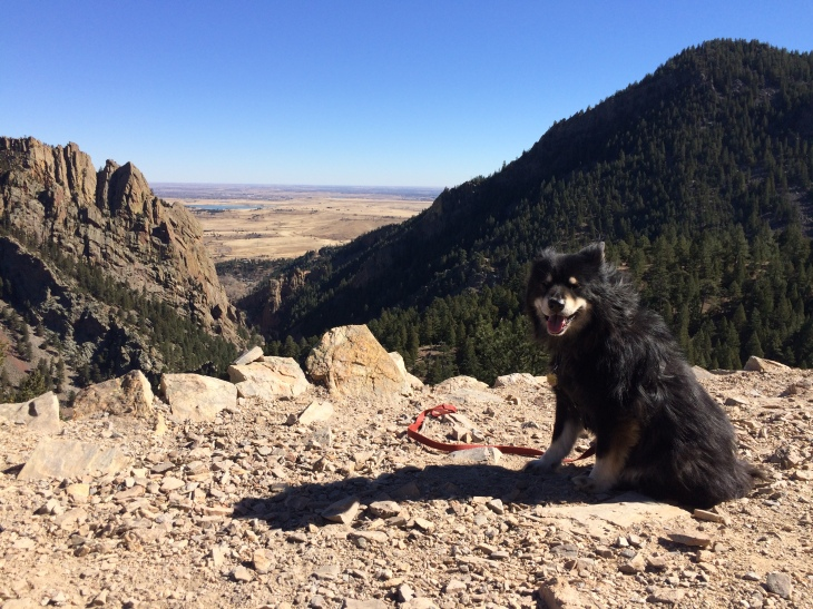 El Dorado Canyon HIke (8)